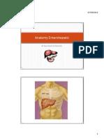 Microsoft PowerPoint - Anatomy Enterohepatic..pdf