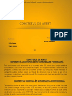 Comitetul de Audit