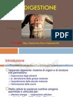 La Digestione(LG)