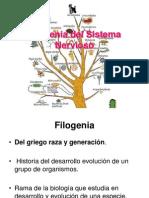 Filogenia d1