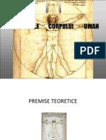 Proportiile Corpului Uman