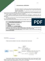 Mapas Mentais - DirAdmin.pdf