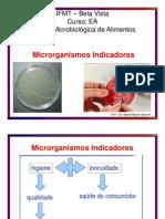 AULA 3 Microrganismos Indicadores
