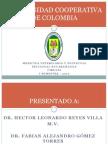 rumenotomia-100421115840-phpapp02
