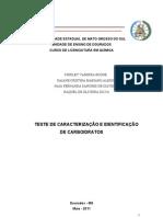 Relatório Carboidratos Pronto