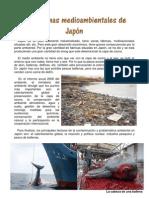 Problemas Ambientales de Japón.pdf
