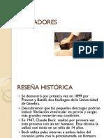 Trabajo Desfibriladores.pdf