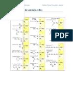 Clasificacion de aminoácidos