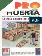2004 - Cria Casera de Gallinas Ponedoras
