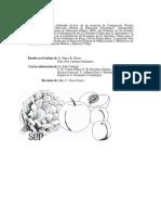 Manual Transformación Frutas y Hortalizas