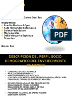diapositivas gereatria