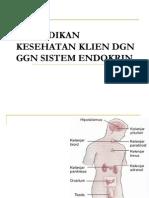 endokrin stikes.pptx