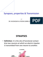 Lecture Synapses, properties & Transmission Dr. Roomi.ppt