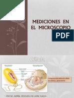 Mediciones en El Microscopio