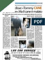 Articolo Senza Colonne 29 gennaio 2013