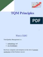 TQM principles