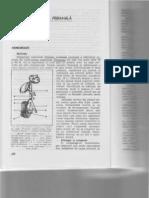 Hemoroizii.pdf