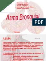 asma 2009.ppt