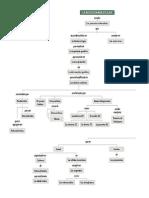 Mapa Conceptual Bio Molecular Bio 9
