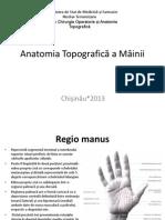 Anatomia Topografica a Mâinii Florea Irina
