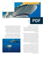 CITES FactSheet Oceanic Whitetip Arabic