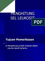 asist-prakt-hit-leu-dc.ppt