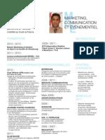 CV Professionnel 2013