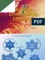Mutações Cromossómicas Estruturais