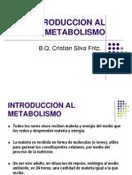 12 Introduccion Al Metabolismo