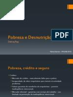 Apresentação - Pobreza e Desnutrição - Debraj Ray.pdf
