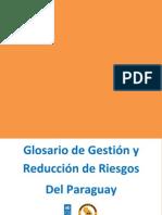 Diccionario Riesgos