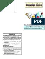 Libro de Geometría21