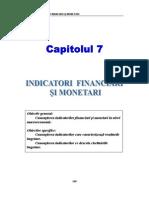 Cap 7 Indicatori Financiari