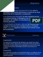 ALH [10] Respiratorio [Anatomia].ppt