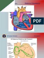 ALH [20] Cardio Ciculatorio.ppt