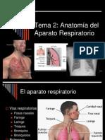 ANATO aparato_respiratorio