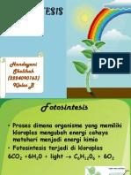 respirasi tumbuhan