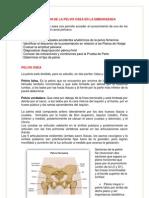 EVALUACIÓN DE LA PELVIS OSEA EN LA EMBARAZADA.docx