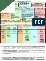 CLASIFICACION DE LOS HUESOS.pdf