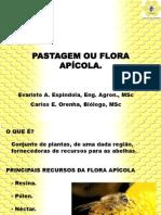 Flora  Apícola