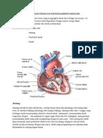 Anatomi Dan Fisiologi Sistem Kardiovaskuler