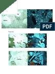 optical minerals