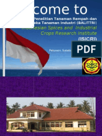 Indonesian Spice and Industrial Crops Research Institute, ISICRI, BALITTRI