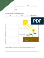 Sains Tahun 4 Keperluan Asas Tumbuhan Latihan Asas (2013)