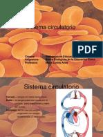 circulatorio (2)