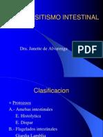 Parasitismo Intestinal 3 by Lula