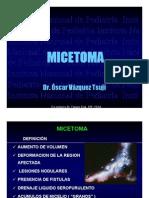 Micetoma2007
