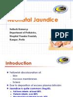 Neonatal Jaundice Drkumar