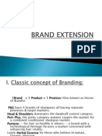 brandextension-120222014242-phpapp02