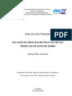 Secagem de Misturas de Polpas de Frutas Tropicais em Leito de Jorro (Josilma Silva de Souza)